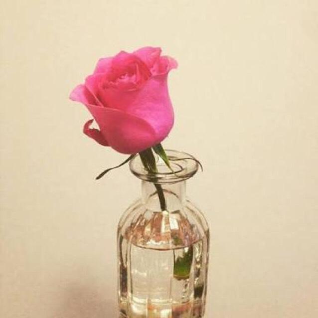 ❁︎用意するもの  ・百均のバラの花私は1つ (容器によって合わせてください♡) ・お花を入れる容器 (ガラスがおすすめ) ・百均のチーク ・化粧or水 ・絵の具の筆or百均の筆 ・キッチンペーパー 500円以内で、で出来ちゃいます♡