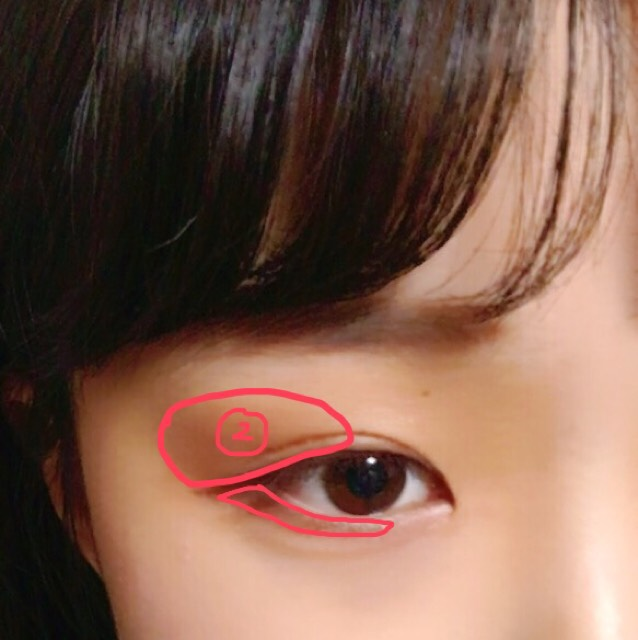 ②の色は筆で塗るのがおすすめです。筆だと簡単にグラデーションのようになります。目頭に近づくにつれて薄くなるように!(わかりにくい)