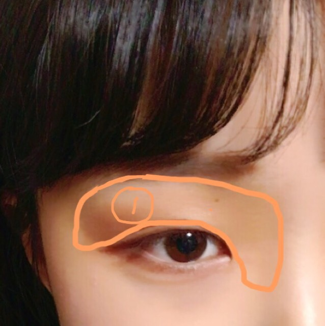 ①の色をアイホール全体に塗り、ノーズシャドウとして鼻の付け根から眉頭にかけては濃いめに塗ります。