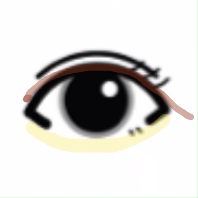 下まぶた(涙袋)には上まぶたと同じシャドウをぬる  アイラインはまつ毛の間を埋めるように控えめに目頭から引きます たれ目の長めでも濃く見えません◎