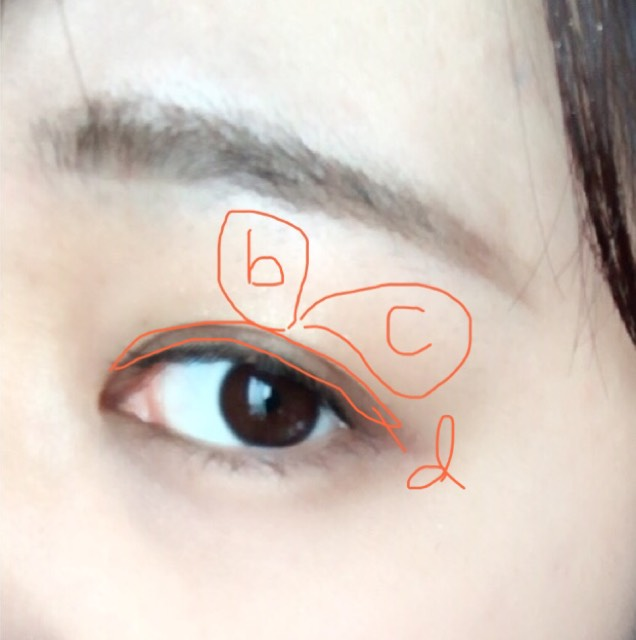 aはアイホール全体に。 bは黒目の上に縦に。 cはグラデーションにするようにぼかす。 dは二重幅にそれぞれ塗ります。