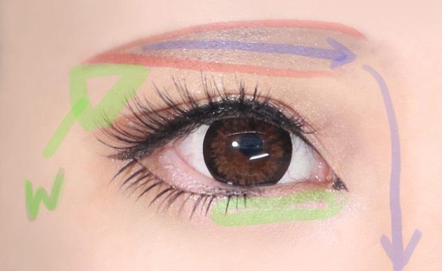 薄い赤のように濃いブラウンを眉尻→眉頭となるように眉毛ブラシで書き、薄いブラウンで青の方向に濃い→薄いになるように濃さを調節しながら細いブラシで乗っけていきます。そのままノーズまで繋げてください。 緑の部分にはアイシャドウパレットのホワイトをふんわりのせると立体感が出ます。