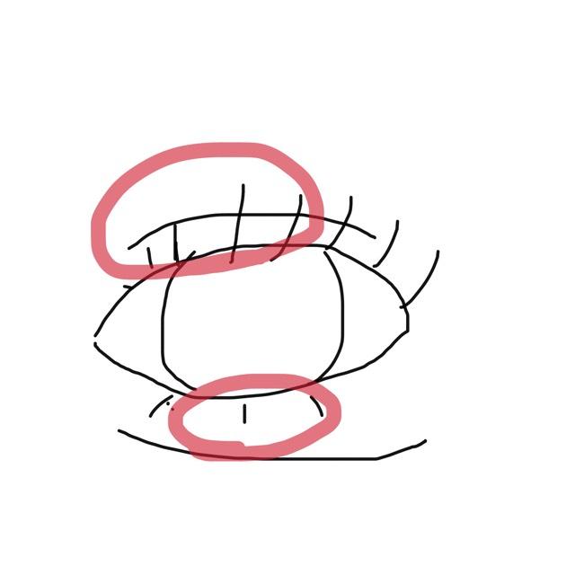 私は目を丸くしたい!目頭側のまつ毛がすくないので目頭と真ん中を中心にマスカラを3度塗り位する勢いで塗ります。!
