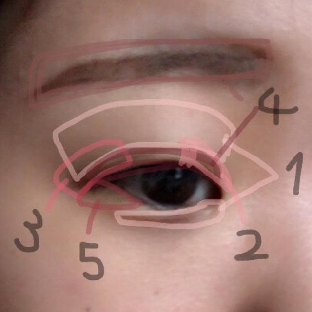 1をアイホール全体と涙袋に 2を目頭から中央にかけて3を目尻から中央に4を二重幅に 5を下瞼の目尻三分の一まで 統一性を出すために 眉にも4をふんわり重ねます