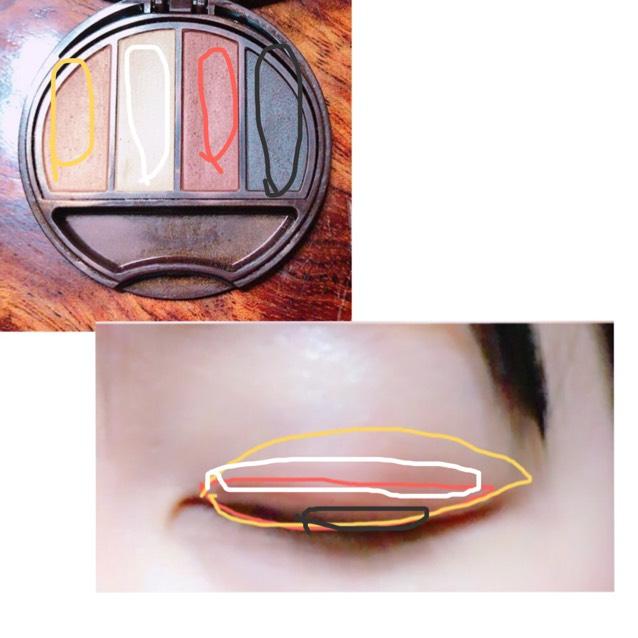 ①1番左の色を瞼全体に塗る ②右から2番目の茶色を二重幅に塗る ③1番右の黒っぽいのを黒目の上になるところに塗る ④ ①と②の境目に塗ってぼかす