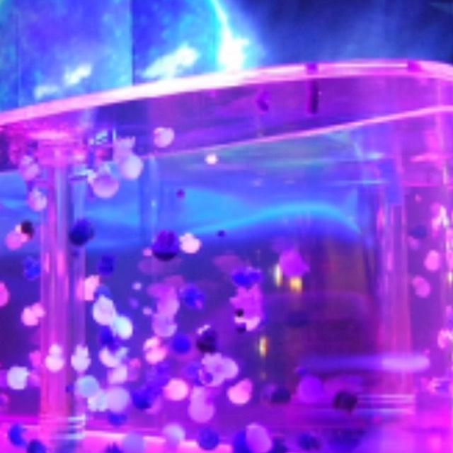 アクアリウム メイクのBefore画像