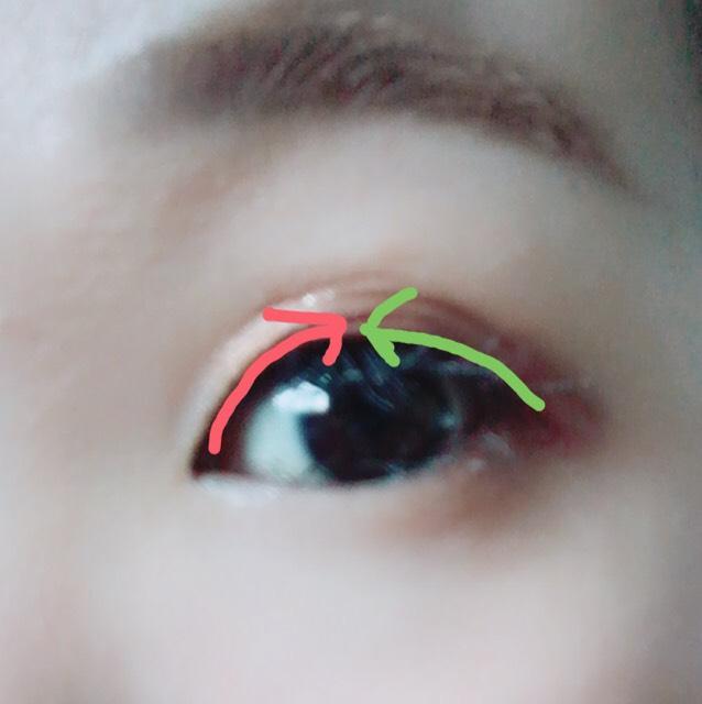 ここから二重スタート! ローヤルプチアイムを睫毛のキワに図のように塗ります