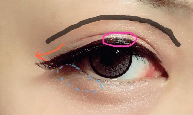 アイライナーはピンクの丸のところを少し広く引きます。 払いは少したれ目意識します。 水色の点々のところに薄い茶色。 ダブルラインは茶色のペンシルでなぞり綿棒でマットの茶色のアイシャドウでぼかします。