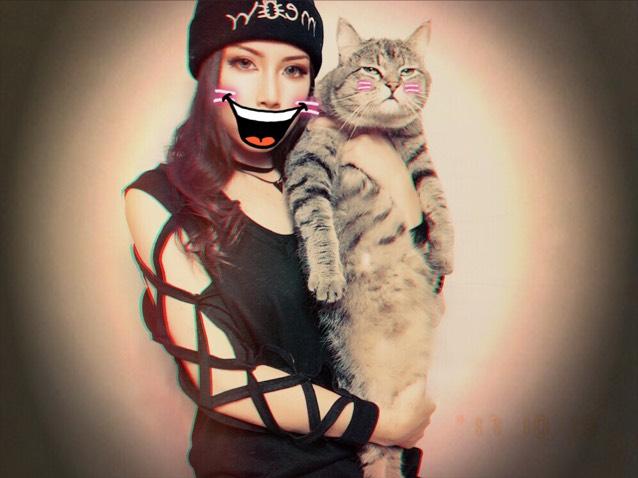 これ わしの映り悪いけど 猫の映り最高だからのせとくね