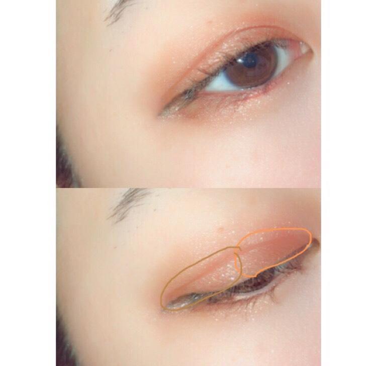 オレンジっぽいアイシャドウを二重幅の目頭側から黒目の上くらいまで塗ります  もう少し暗めのオレンジブラウンのカラーを二重幅の黒目の上から目尻まで載せます  最初に塗ったカラーと同じく目尻ははみ出しめに!  境目は軽くぼかしてあげると自然になります、!