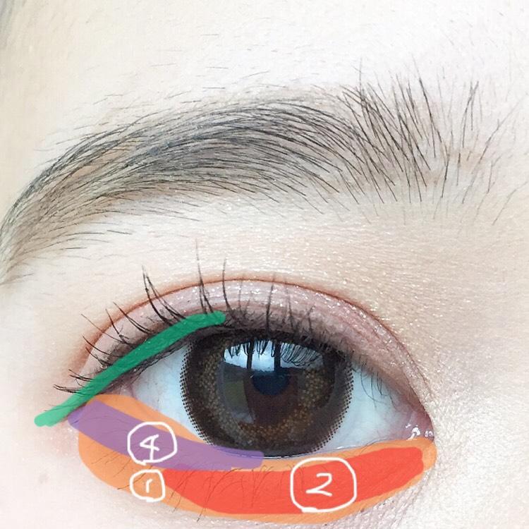 涙袋に①を塗り目頭から黒目の終りまで軽く②を塗ります。 そして、目尻のシャドウは粘膜から3ミリくらい離して④を塗ります。 黒目から目尻にかけて半分、リキッドアイライナーでアイラインを書きます