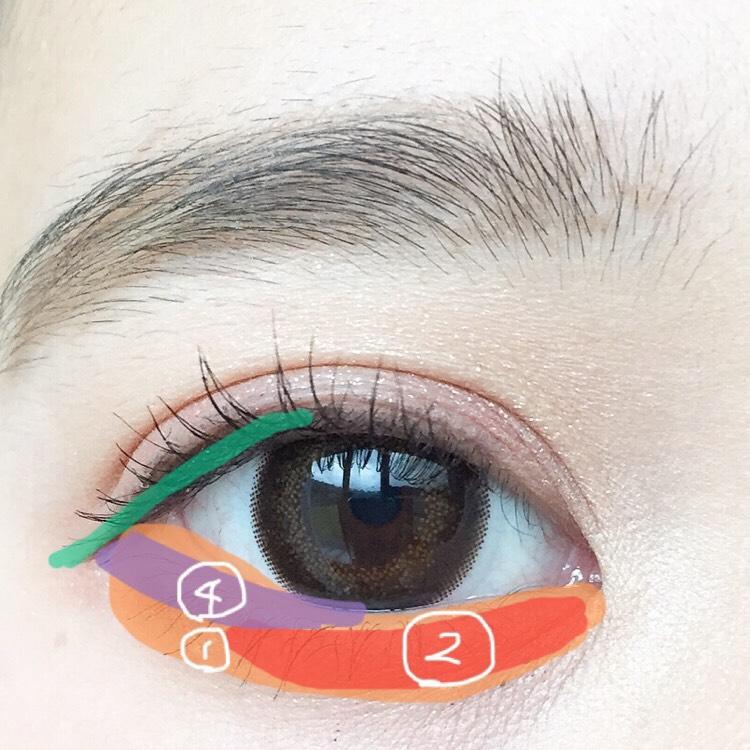 涙袋全体に①を塗り目頭から黒目の終りまで②を塗り目尻にフレームラインから少し話して④を塗ります。 粘膜を埋め、少し長めに引きます