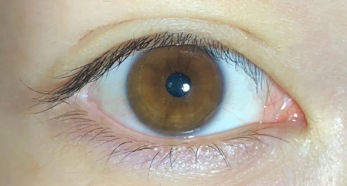 目を開けた時、目尻や目頭にメザイクの繊維が見えない所までハサミで切ればかなり自然な二重に見えます。