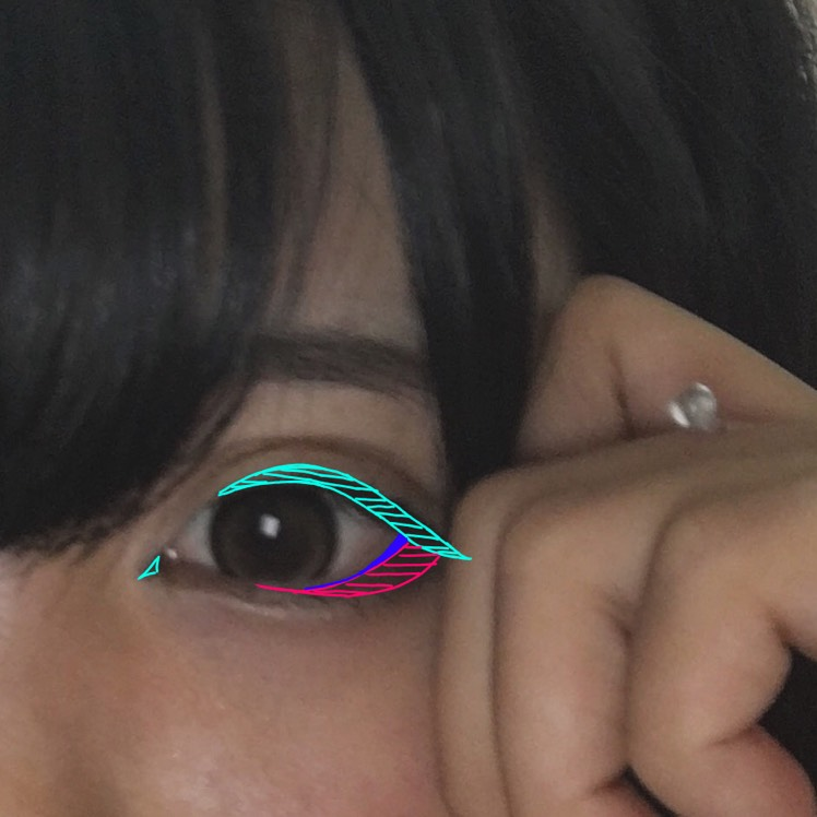 緑 アイライン 青 ペンシルタイプのアイライナー ピンク 先程のアイシャドウの濃い茶色  アイラインはとにかく太く! 黒目の上から目尻をタレ目に8㎜程引きます。 黒目の上は太めに!丸目になるポイントです!  私はつり目がコンプレックスなのでアイシャドウで隙間を埋めます!