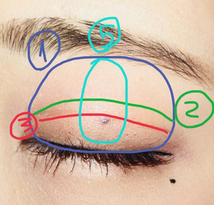 ①指で瞼全体に塗ります。 ②目をつぶって半分くらいに塗ります ③二重幅に塗っていきます ⑤立体感を出すために縦にラメをいれてます。