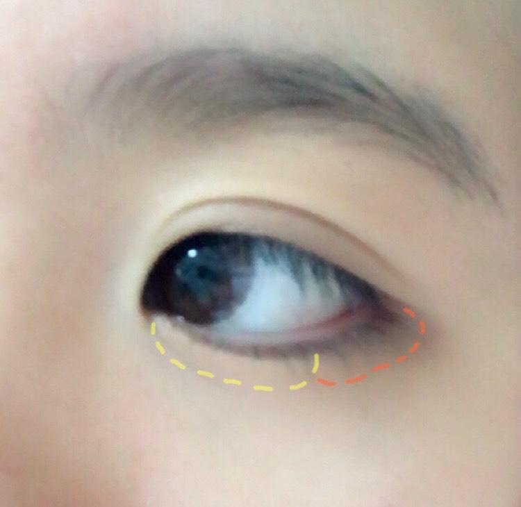 点線の色間違えましたが、①を涙袋の目頭側から黒目の終わりまで塗り、目尻に少し④を塗る。その境目をチップでぼかす。
