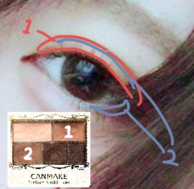 アイシャドウを 1の色を指で二重幅に、 2の色をチップで二重の線と目尻3分の1をなぞる様に塗ります