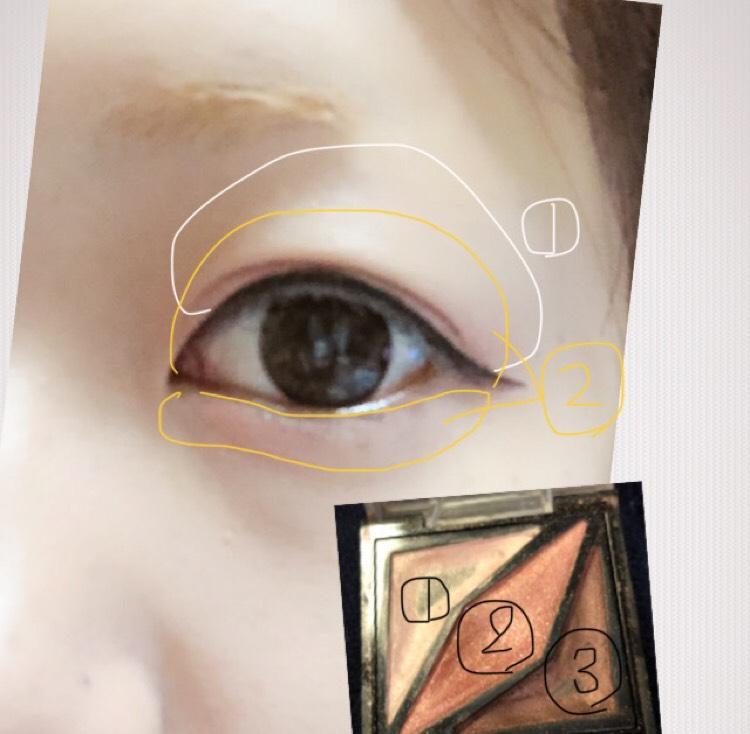 まずは①をアイホール全体につけます。 二重幅より少しオーバー気味に②もつけます そしてアイラインです 目を開けた状態で目尻のラインの位置を決め、目頭まで一直線に引きます。