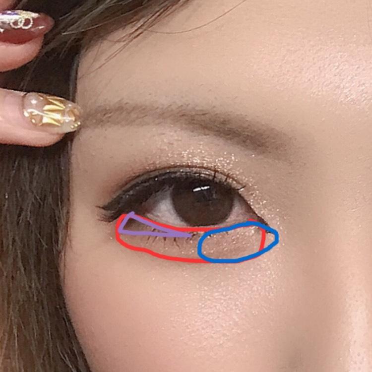 ポイント① 涙袋(赤)→赤やオレンジやブラウン、お好みのカラーを全体に塗る 目頭(青)→ハイライトを入れてる(なるべくベージュ等がいい) 目尻(紫)→目尻は暗い色を三角形に入れて全体を引き締める。