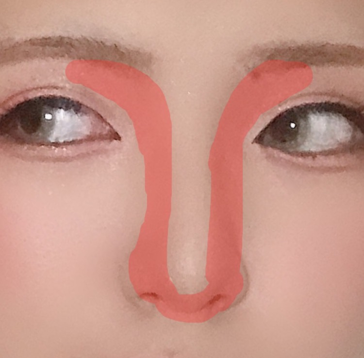 ノーズシャドウはこんな感じ 私は全部繋げる んで、小鼻も鼻の下も入れる