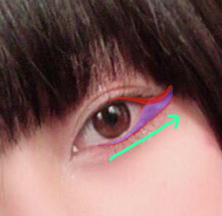 紫の部分を空けるイメージで赤色のようにアイラインを引いていきます。  黒目の形に沿って、黒目の中心は隙間を作ります。そこからなるべく直線を意識して目尻に向かって、上のアイラインと合流することを意識しながらアイラインを引きます。(※本当に合流はせずに隙間を作る)  色をつけ忘れてしまったんですが、切開線も描いています。筆の先をうまく使ってあまり慎重になりすぎずピッと先が細くなるように描いています。  睫毛の隙間も忘れずにアイラインで埋めます。
